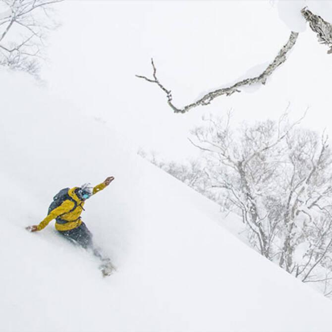 Snow Packs & Gear